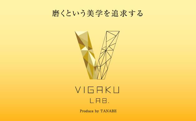 VIGAKU